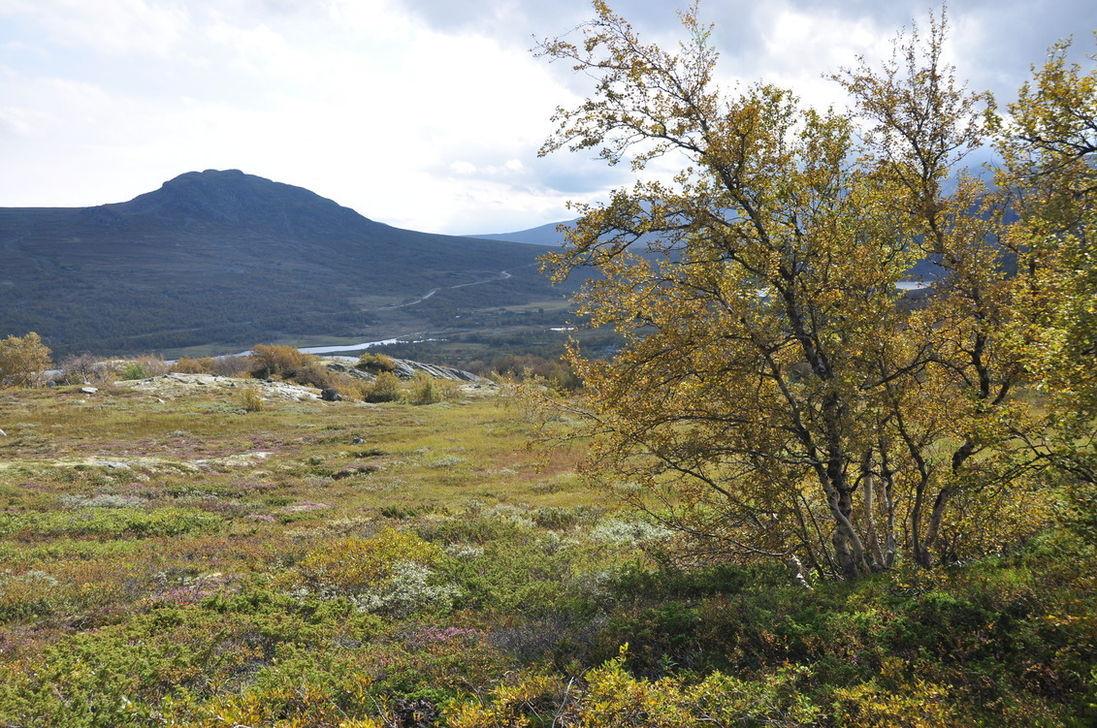 Norská podzimní krajina|1097|728|